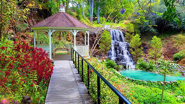 Maui Botanical Garden by Michael Rucker