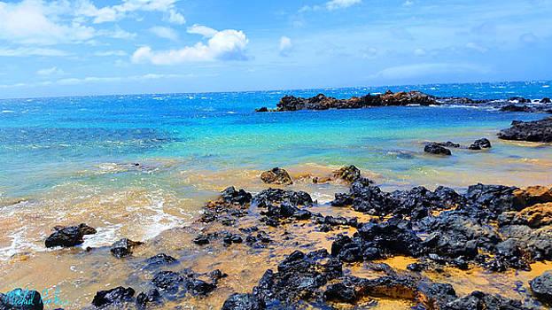 Maui Shoreline by Michael Rucker
