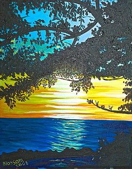 Maui Sunset by Donna Blossom
