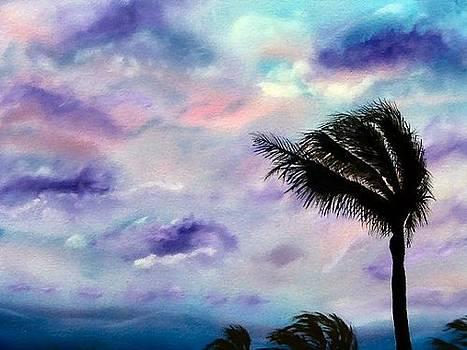 Maui Sunset  by Donna Jeanne  Carver