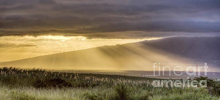 Maui Sunset God Rays by Dustin K Ryan