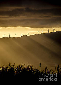 Maui Wind Farm Sunset by Dustin K Ryan
