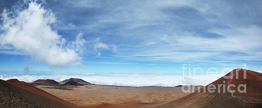 Charmian Vistaunet - Mauna Kea Summit Panorama