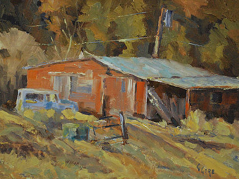McCarthy's Shed by Gary Gore