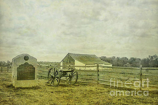 McPherson Barn and Cannon Gettysburg  by Randy Steele