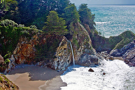 McWay Falls by Suzanne Stout