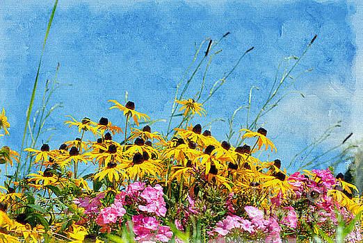 Meadow Wildflowers by Elaine Manley