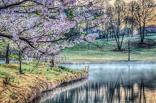 Meadowlark Gardens by Dan Girard