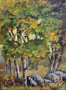 Meadow's Edge by Carol Hart