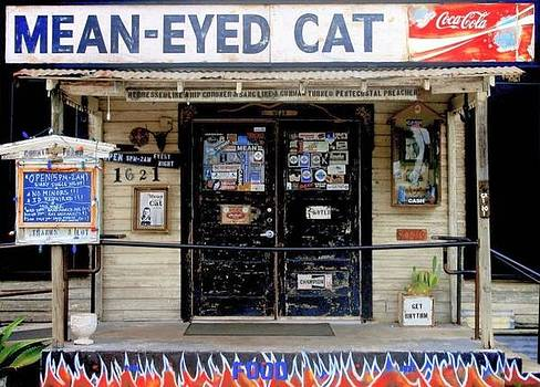 MeanEyed Cat in Austin  by Gia Marie Houck