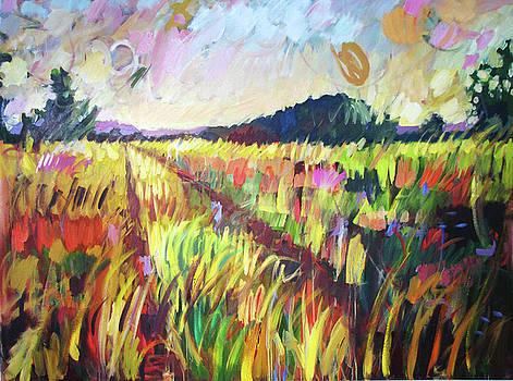 Meandering Path by Marianne  Gargour