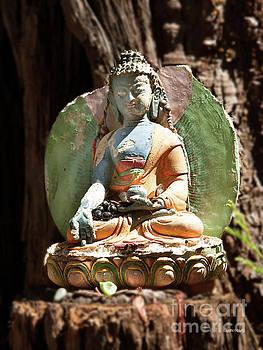 Medicine Buddha with Offerings by Carol Lynn Coronios
