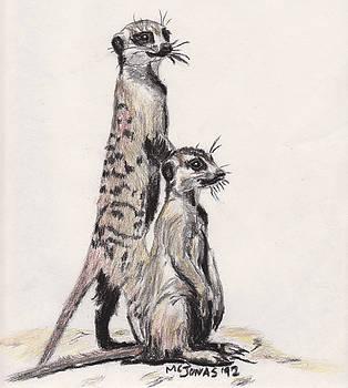 Meerkats by Marqueta Graham