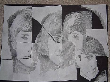 Meet The Beatles by Michael Hogan