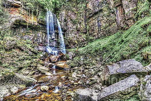 Steve Purnell - Melincourt Falls Painterly