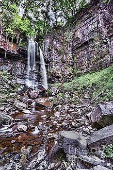 Steve Purnell - Melincourt Falls