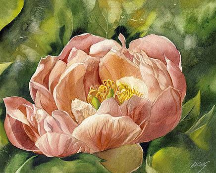 Alfred Ng - Memory of Spring - coral peony
