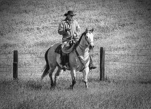 Sandra Bronstein - Mending Fences - Montana