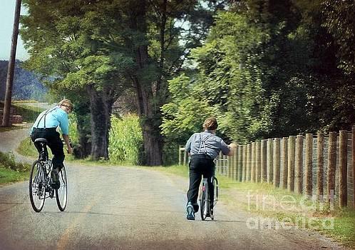 Mennonite Boys Summer Bike Ride by Beth Ferris Sale