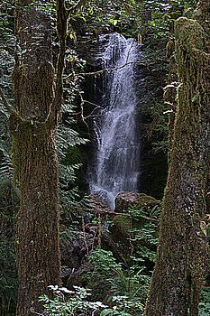 Merriman Falls by Lynn Bawden