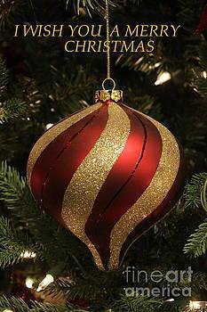 Merry Christmas - A Greeting by Dora Sofia Caputo Photographic Art and Design