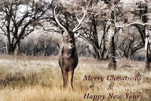 Merry Christmas by Pravine Chester