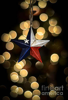 Merry Christmas Texas by Kelly Wade