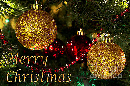 Merry Christmas with Gold Ball Ornaments by Maria Janicki