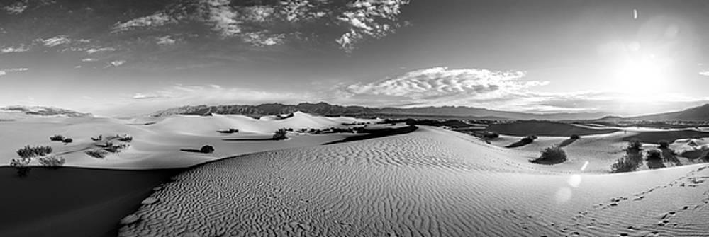 Mesquite Dunes Panorama by Larry Pollock