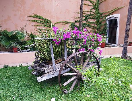 Kurt Van Wagner - Mexican Flower Cart