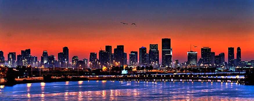 Miami Skyline by  Samdobrow  Photography