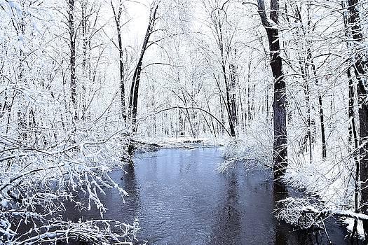Scott Hovind - Michgan Winter 10