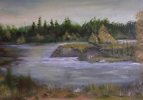 Michigan River by Gary Zimmerman