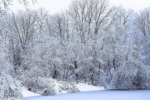 Scott Hovind - Michigan Winter 5