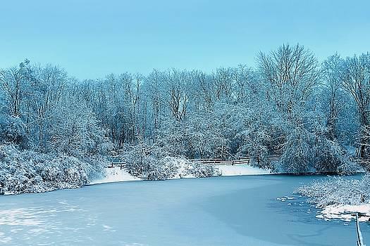 Scott Hovind - Michigan Winter 6