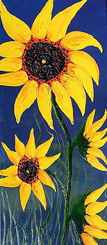 Mid-Night Blue Sky Yellow Sunflowers 1 by Portland Art Creations