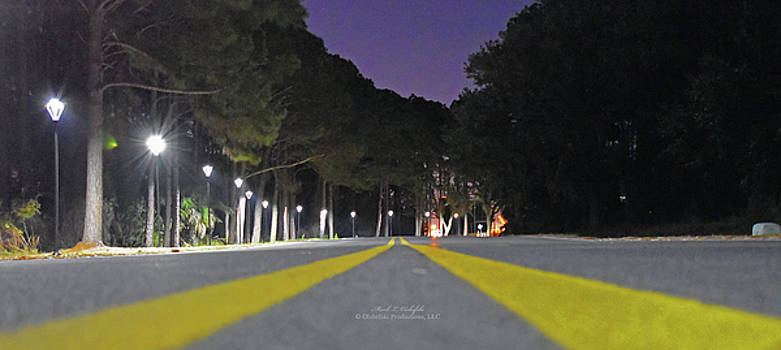Middle of the Road  by Mark Olshefski