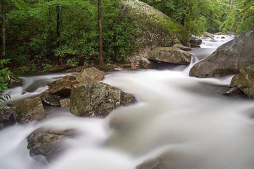 Middle Saluda River by Derek Thornton