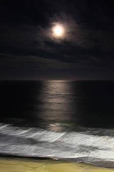 Midnight Sun by Kaye Seaboch