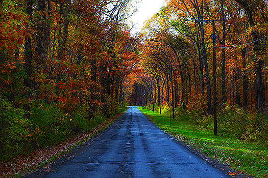 Midwest Fall by Jerome Lynch