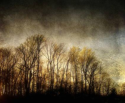 Midwest Sundown by Cynthia Lassiter