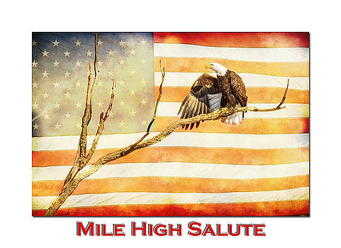 Mile High American Bald Eagle Salute by James BO Insogna