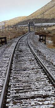 Miles of RR Track by Edward Hass