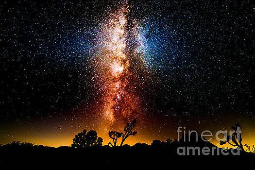 Milkyway Explosion by Jim DeLillo