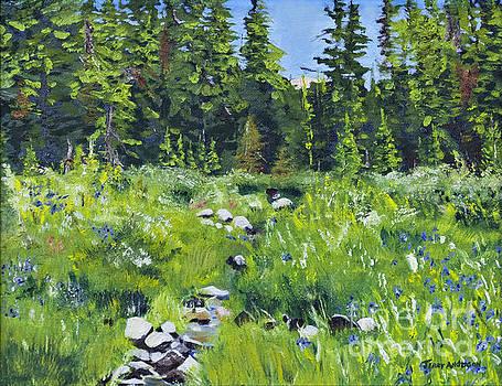 Mill Creek Beginnings by Terry Anderson