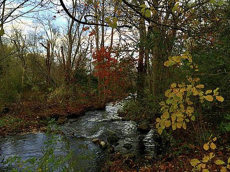 Frank Winters - Mill Creek, Sandwich Massachusetts