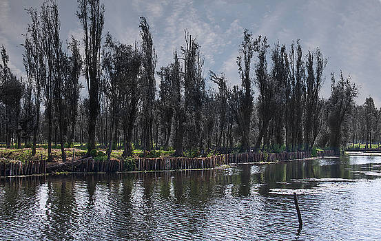 Milpas at Xochimilco by David Resnikoff