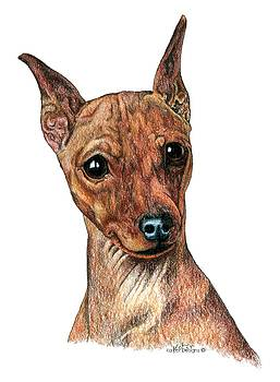 Miniature Pinscher, Min Pin by Kathleen Sepulveda