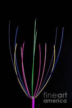 Steve Purnell - Minimal colours 1