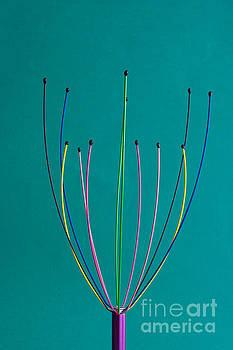 Steve Purnell - Minimal colours 12